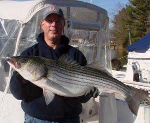 rockfish2 12-4-013